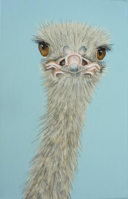Olga the Ostrich